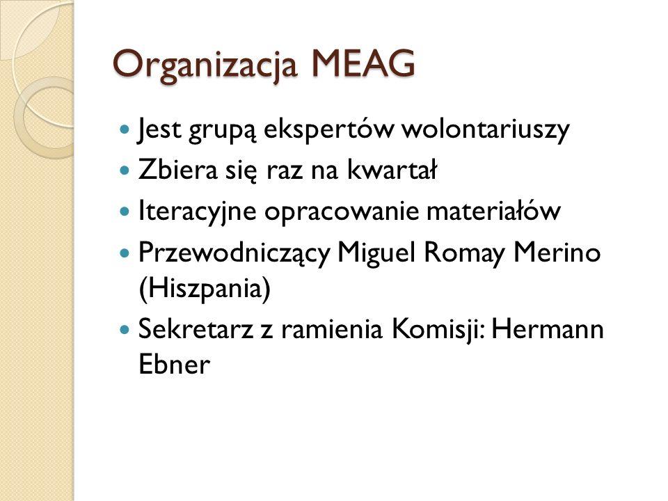 Organizacja MEAG Jest grupą ekspertów wolontariuszy Zbiera się raz na kwartał Iteracyjne opracowanie materiałów Przewodniczący Miguel Romay Merino (Hiszpania) Sekretarz z ramienia Komisji: Hermann Ebner