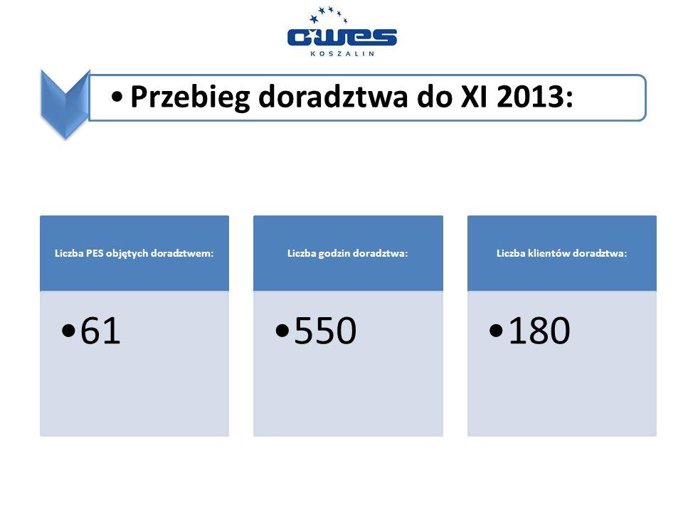 Przebieg doradztwa do XI 2013: Liczba PES objętych doradztwem: 61 Liczba godzin doradztwa: 550 Liczba klientów doradztwa: 180