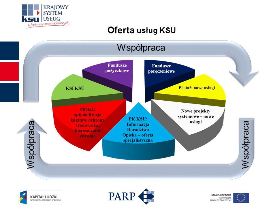 Mapa usług KSU PK KSU KSI KSU Pilotaż: finansowanie zwrotne Pilotaż: ochrona środowiska Pilotaż: optymalizacja kosztów Fundusze poręczeniowe Fundusze pożyczkowe