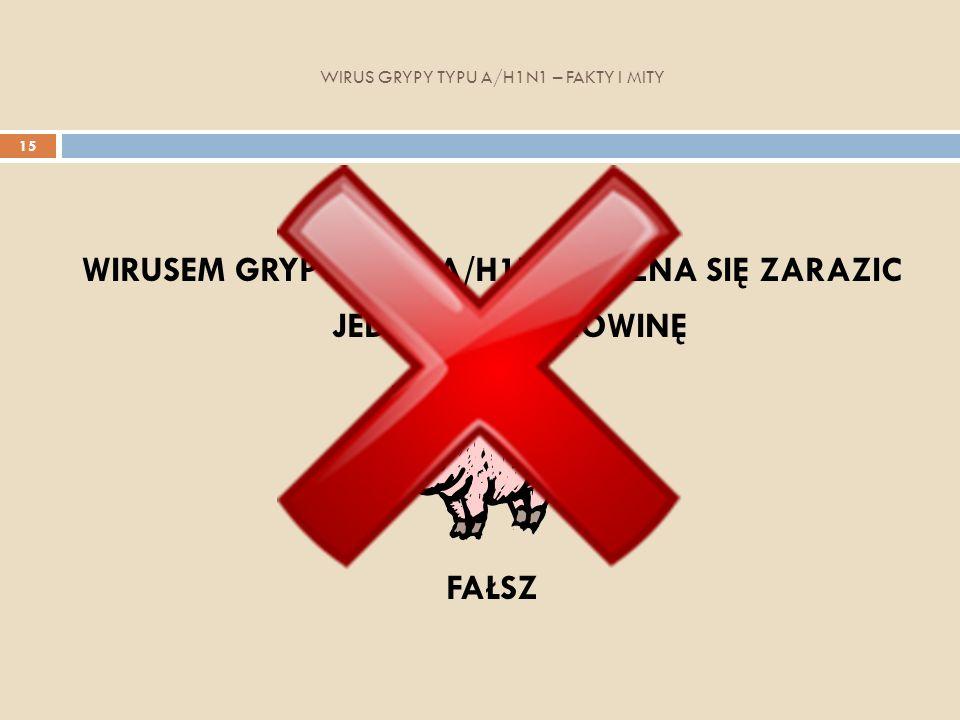 WIRUS GRYPY TYPU A/H1N1 – FAKTY I MITY 15 WIRUSEM GRYPY TYPU A/H1N1 MOŻNA SIĘ ZARAZIC JEDZĄC WIEPRZOWINĘ FAŁSZ