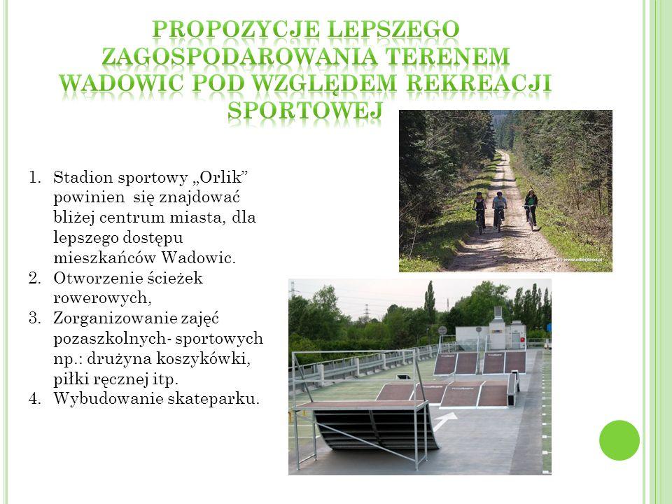 1.Stadion sportowy Orlik powinien się znajdować bliżej centrum miasta, dla lepszego dostępu mieszkańców Wadowic. 2.Otworzenie ścieżek rowerowych, 3.Zo