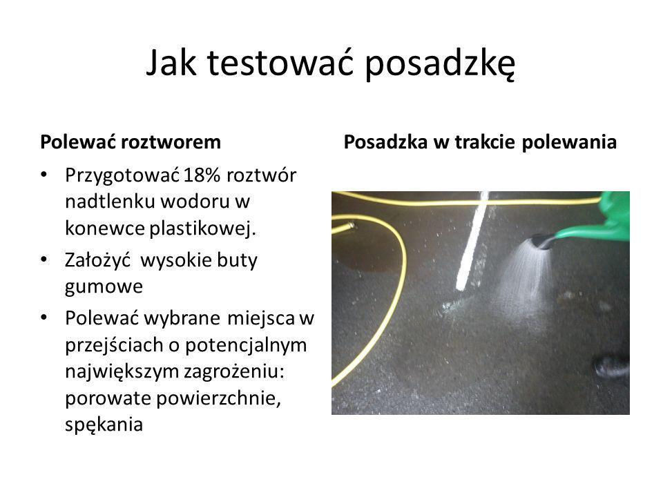 Jak testować posadzkę Polewać roztworem Przygotować 18% roztwór nadtlenku wodoru w konewce plastikowej. Założyć wysokie buty gumowe Polewać wybrane mi