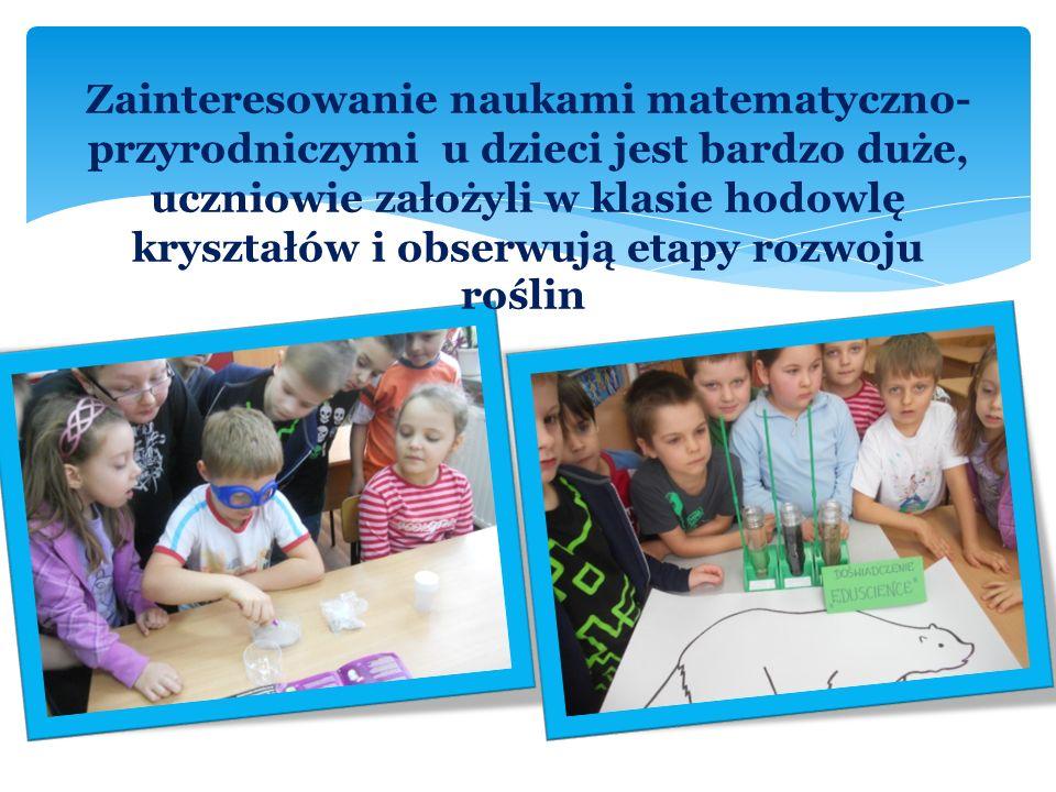 Zainteresowanie naukami matematyczno- przyrodniczymi u dzieci jest bardzo duże, uczniowie założyli w klasie hodowlę kryształów i obserwują etapy rozwoju roślin.