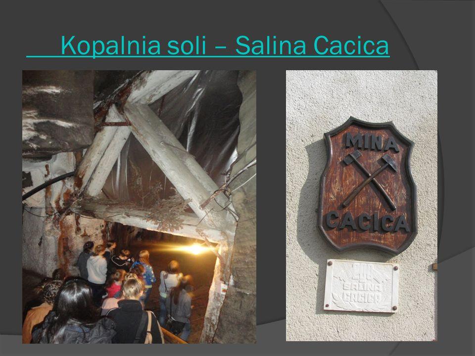 Kopalnia soli – Salina Cacica