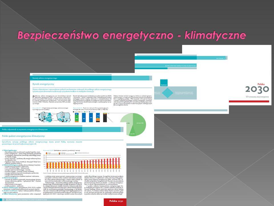 Efektywność i bezpieczeństwo energetyczne oparte na własnych zasobach surowców, zwiększenie wykorzystania odnawialnych źródeł energii, rozwój konkurencyjnych rynków paliw i energii oraz ograniczenie oddziaływania energetyki na środowisko – to priorytety projektu.