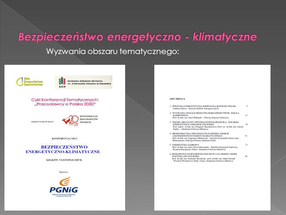 Kluczowym problemem dla całego polskiego sektora energetyki jest poznanie determinantów oraz ograniczeń dalszego rozwoju szeroko pojętego rynku energetycznego.