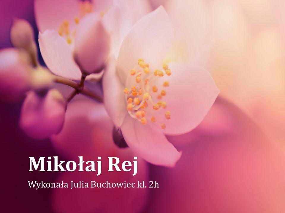 Mikołaj RejMikołaj Rej Wykonała Julia Buchowiec kl. 2hWykonała Julia Buchowiec kl. 2h