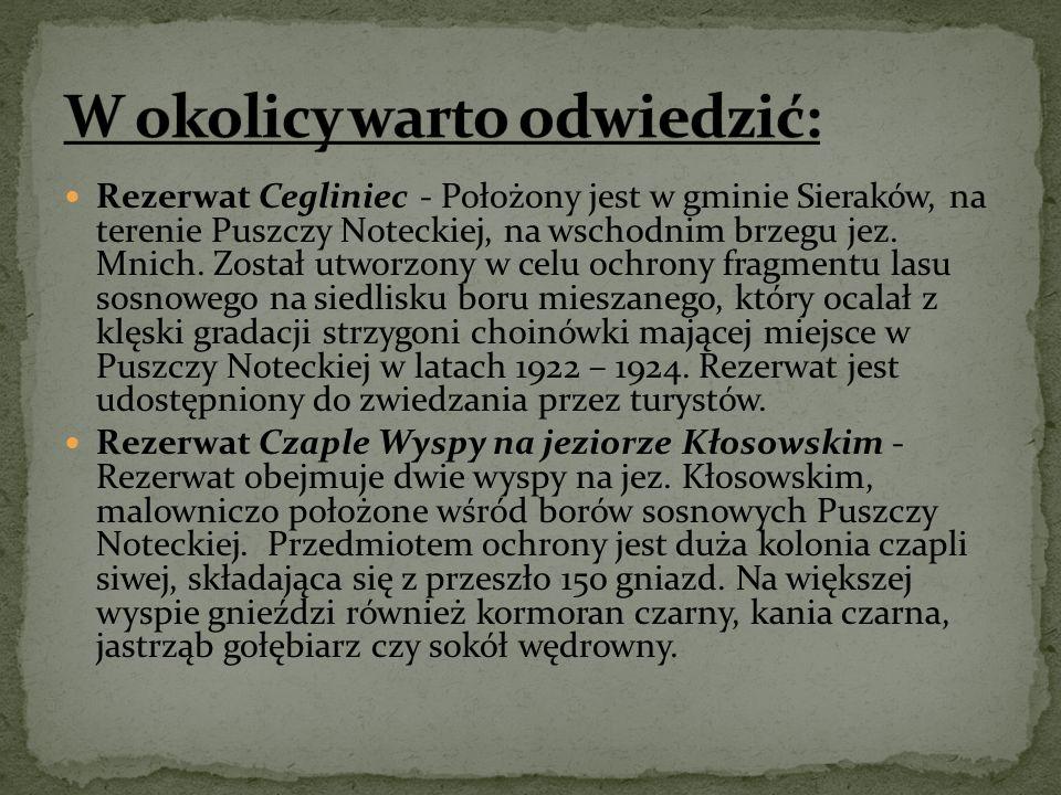 Rezerwat Cegliniec - Położony jest w gminie Sieraków, na terenie Puszczy Noteckiej, na wschodnim brzegu jez.