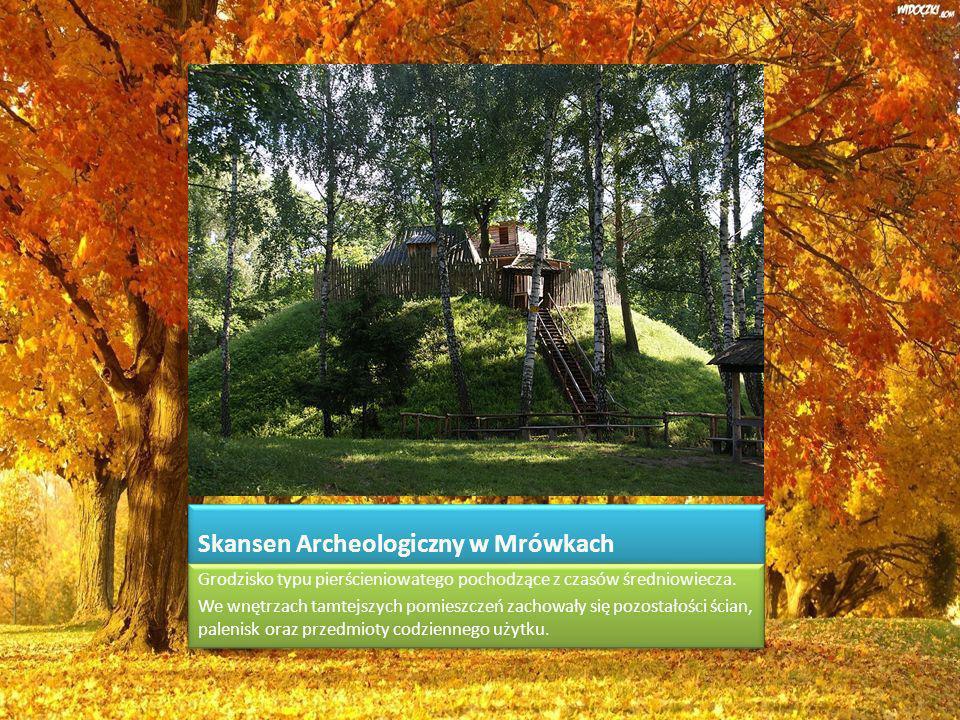 Skansen Archeologiczny w Mrówkach Grodzisko typu pierścieniowatego pochodzące z czasów średniowiecza.