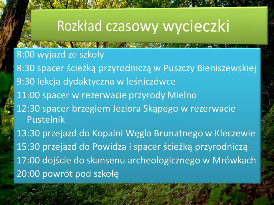 8:00 wyjazd ze szkoły 8:30 spacer ścieżką przyrodniczą w Puszczy Bieniszewskiej 9:30 lekcja dydaktyczna w leśniczówce 11:00 spacer w rezerwacie przyrody Mielno 12:30 spacer brzegiem Jeziora Skąpego w rezerwacie Pustelnik 13:30 przejazd do Kopalni Węgla Brunatnego w Kleczewie 15:30 przejazd do Powidza i spacer ścieżką przyrodniczą 17:00 dojście do skansenu archeologicznego w Mrówkach 20:00 powrót pod szkołę
