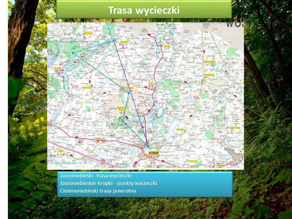 Trasa wycieczki Jasnoniebieski- trasa wycieczki Jasnoniebieskie kropki - punkty wycieczki Ciemnoniebieski-trasa powrotna Jasnoniebieski- trasa wycieczki Jasnoniebieskie kropki - punkty wycieczki Ciemnoniebieski-trasa powrotna