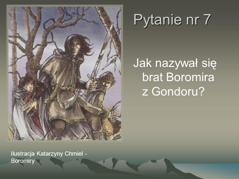 Pytanie nr 7 Jak nazywał się brat Boromira z Gondoru? Ilustracja Katarzyny Chmiel - Boromiry