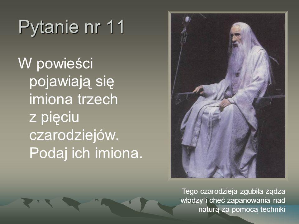Pytanie nr 11 W powieści pojawiają się imiona trzech z pięciu czarodziejów.