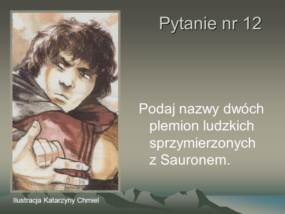 Pytanie nr 12 Podaj nazwy dwóch plemion ludzkich sprzymierzonych z Sauronem. Ilustracja Katarzyny Chmiel