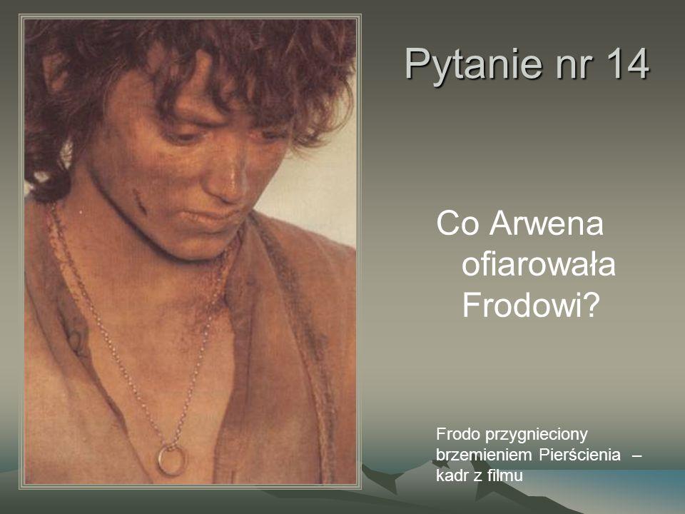 Pytanie nr 14 Co Arwena ofiarowała Frodowi? Frodo przygnieciony brzemieniem Pierścienia – kadr z filmu