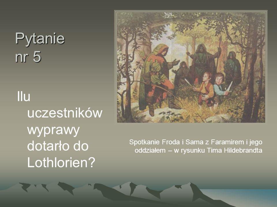Pytanie nr 5 Ilu uczestników wyprawy dotarło do Lothlorien? Spotkanie Froda i Sama z Faramirem i jego oddziałem – w rysunku Tima Hildebrandta