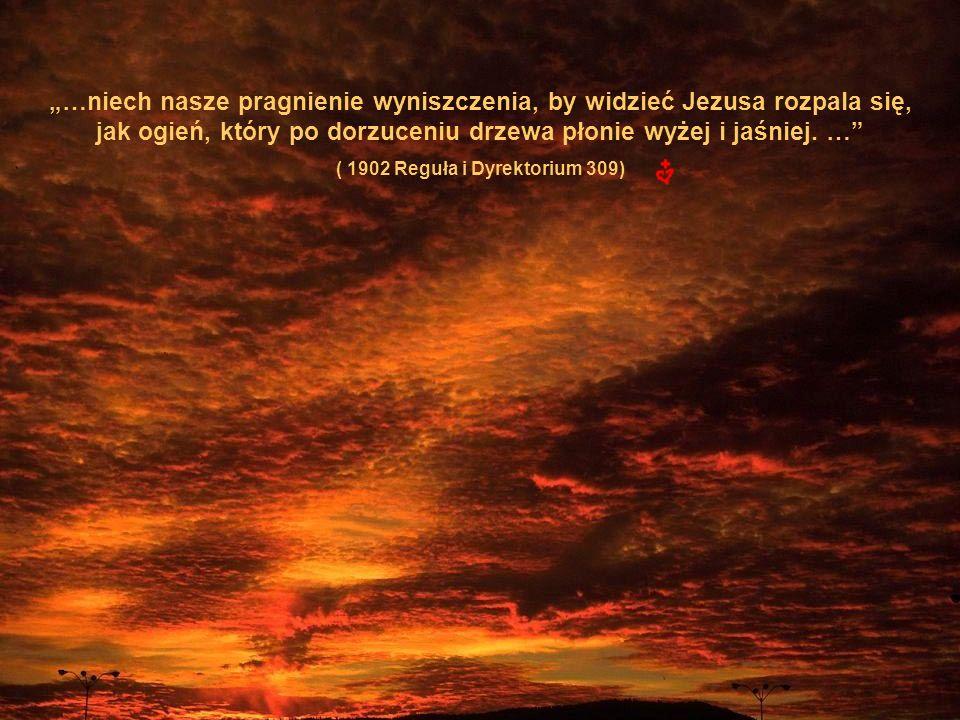 …niech nasze pragnienie wyniszczenia, by widzieć Jezusa rozpala się, jak ogień, który po dorzuceniu drzewa płonie wyżej i jaśniej.