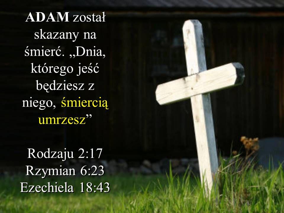 ADAM został skazany na śmierć. Dnia, którego jeść będziesz z niego, śmiercią umrzesz Rodzaju 2:17 Rzymian 6:23 Ezechiela 18:43