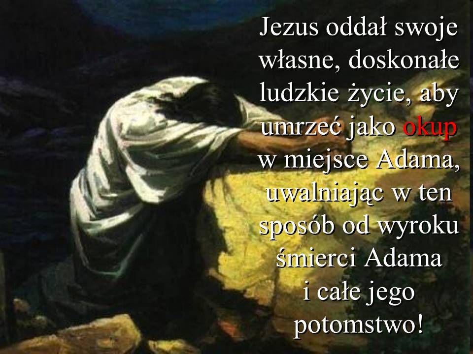 Jezus oddał swoje własne, doskonałe ludzkie życie, aby umrzeć jako okup w miejsce Adama, uwalniając w ten sposób od wyroku śmierci Adama i całe jego p