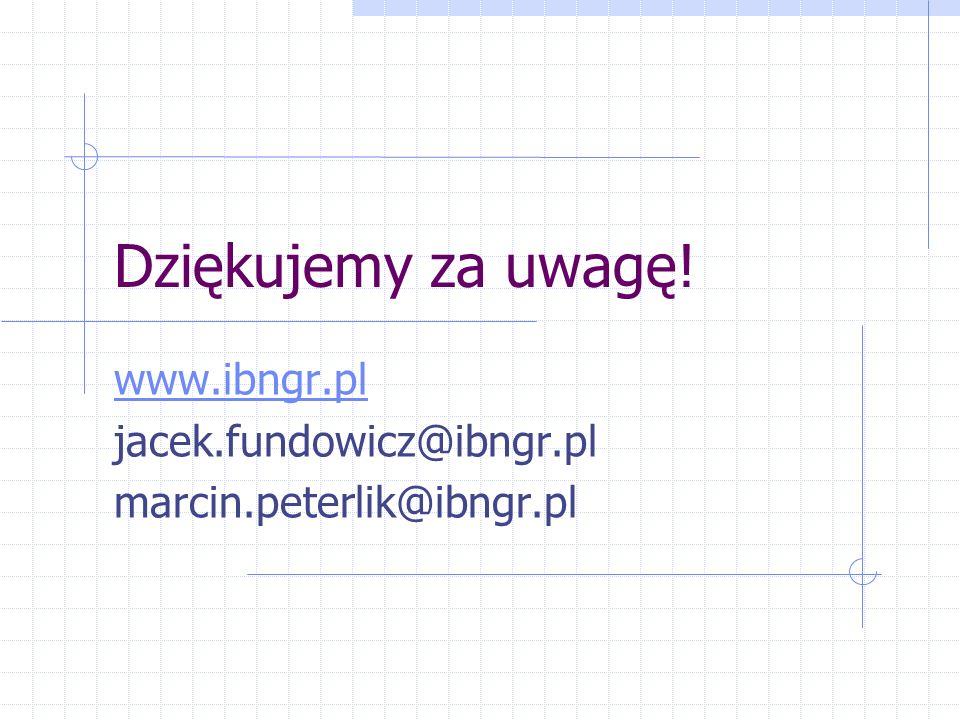 Dziękujemy za uwagę! www.ibngr.pl jacek.fundowicz@ibngr.pl marcin.peterlik@ibngr.pl