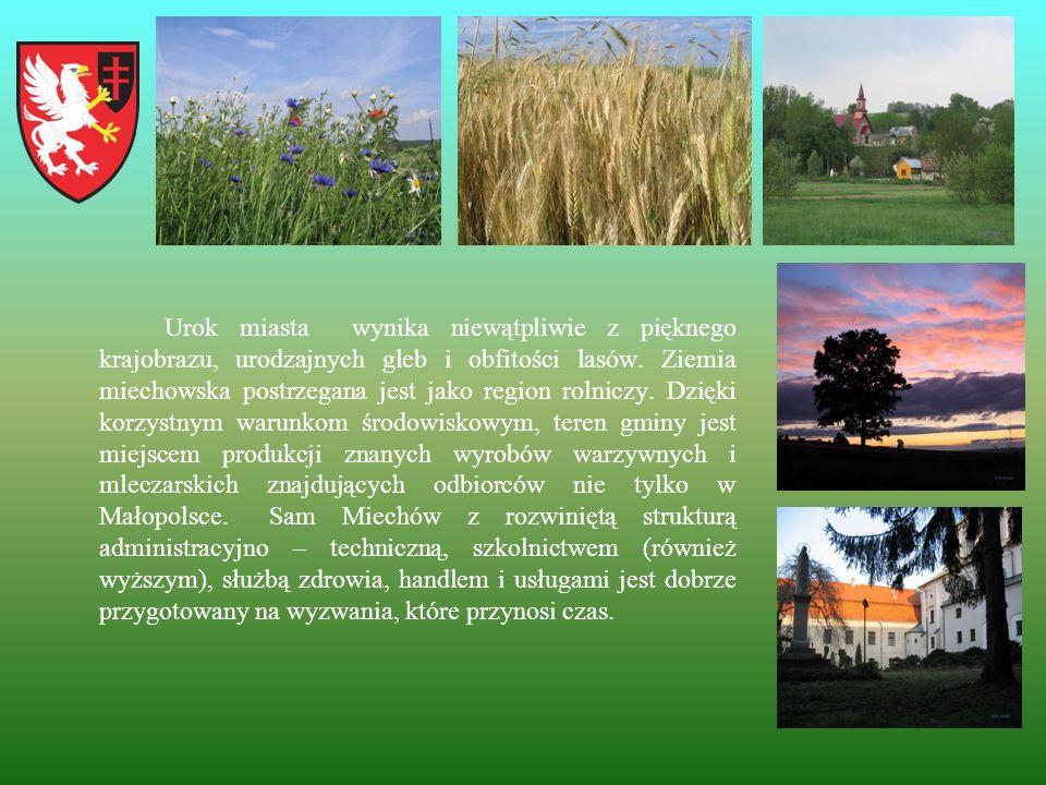 Urok miasta wynika niewątpliwie z pięknego krajobrazu, urodzajnych gleb i obfitości lasów. Ziemia miechowska postrzegana jest jako region rolniczy. Dz