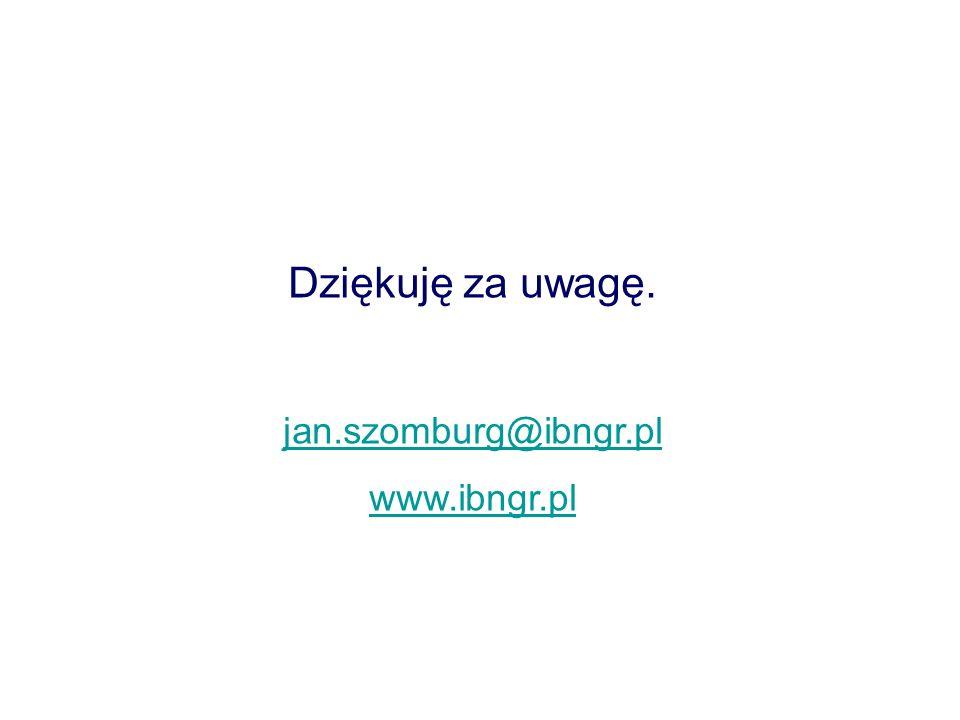 Dziękuję za uwagę. jan.szomburg@ibngr.pl www.ibngr.pl