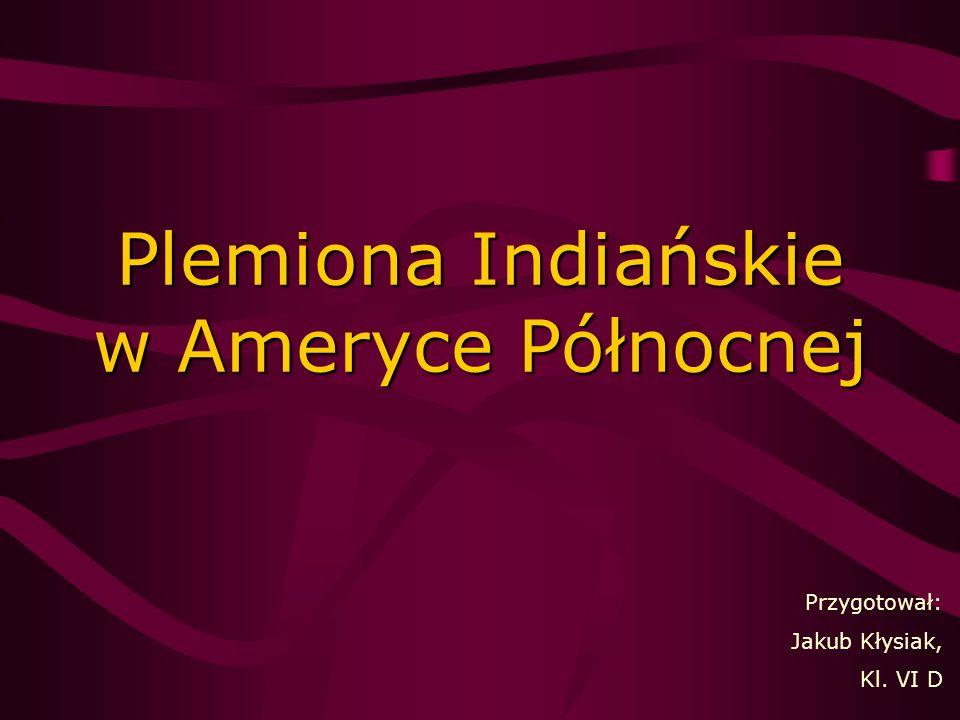 Plemiona Indiańskie w Ameryce Północnej Przygotował: Jakub Kłysiak, Kl. VI D