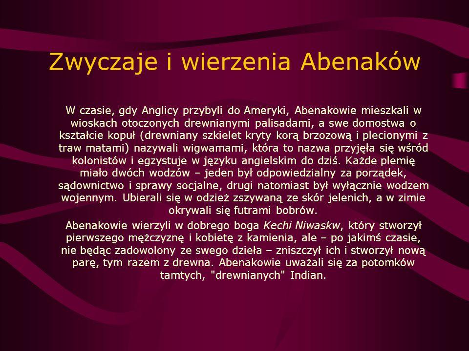 Zwyczaje i wierzenia Abenaków W czasie, gdy Anglicy przybyli do Ameryki, Abenakowie mieszkali w wioskach otoczonych drewnianymi palisadami, a swe domo
