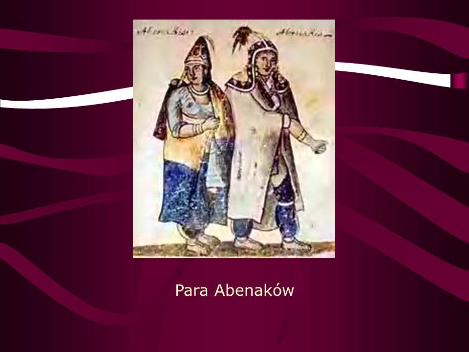 Apacze Apache – zespół grup etnicznych Indian Ameryki Północnej, spokrewnionych prawdopodobnie z Atabaskami, zamieszkujący rezerwaty w stanach Arizona, Nowy Meksyk i Oklahoma.