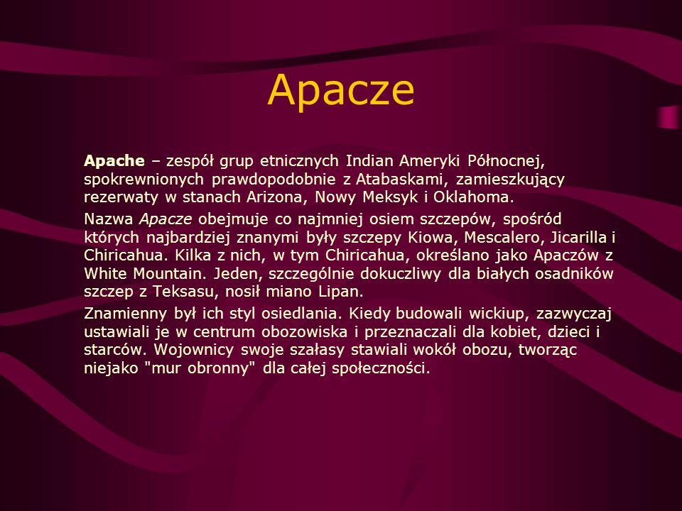 Apacze Apache – zespół grup etnicznych Indian Ameryki Północnej, spokrewnionych prawdopodobnie z Atabaskami, zamieszkujący rezerwaty w stanach Arizona