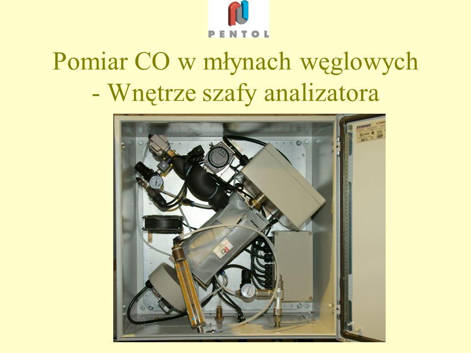 Pomiar CO w młynach węglowych - Wnętrze szafy analizatora