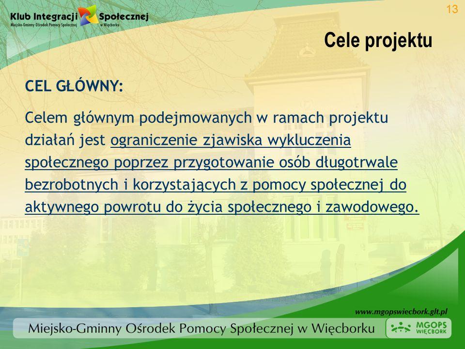 Cele projektu 13 CEL GŁÓWNY: Celem głównym podejmowanych w ramach projektu działań jest ograniczenie zjawiska wykluczenia społecznego poprzez przygoto