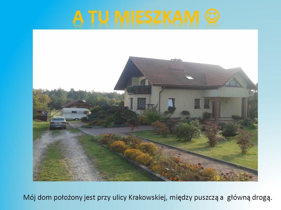 Mój dom położony jest przy ulicy Krakowskiej, między puszczą a główną drogą.