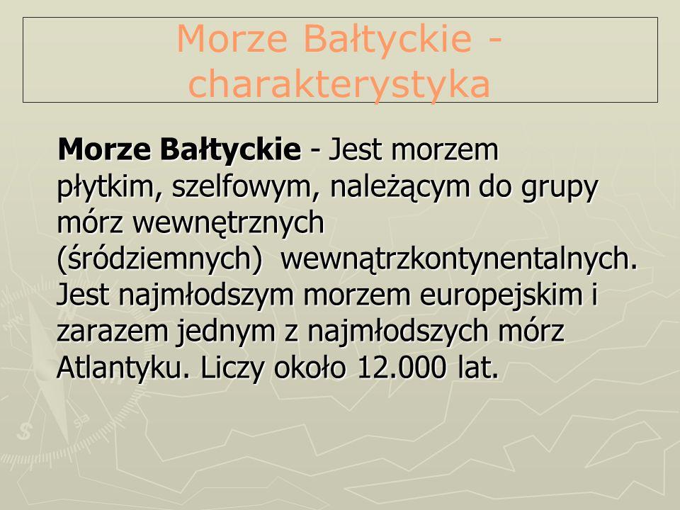 Położenie Położenie Bałtyk leży w Europie Północnej.