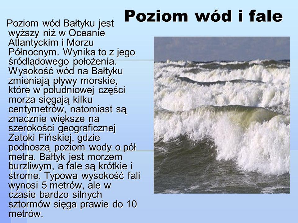 Poziom wód i fale Poziom wód Bałtyku jest wyższy niż w Oceanie Atlantyckim i Morzu Północnym. Wynika to z jego śródlądowego położenia. Wysokość wód na