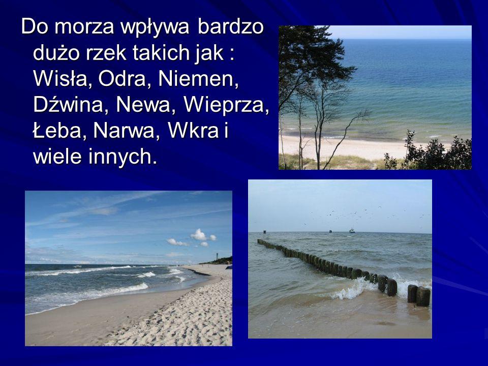 Do morza wpływa bardzo dużo rzek takich jak : Wisła, Odra, Niemen, Dźwina, Newa, Wieprza, Łeba, Narwa, Wkra i wiele innych.