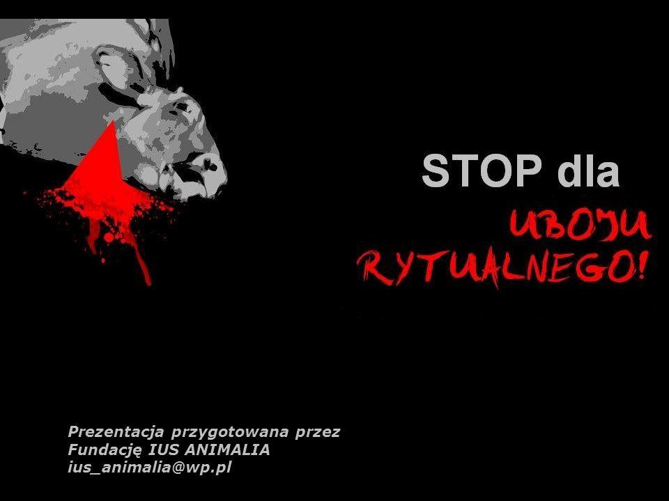 Prezentacja przygotowana przez Fundację IUS ANIMALIA ius_animalia@wp.pl