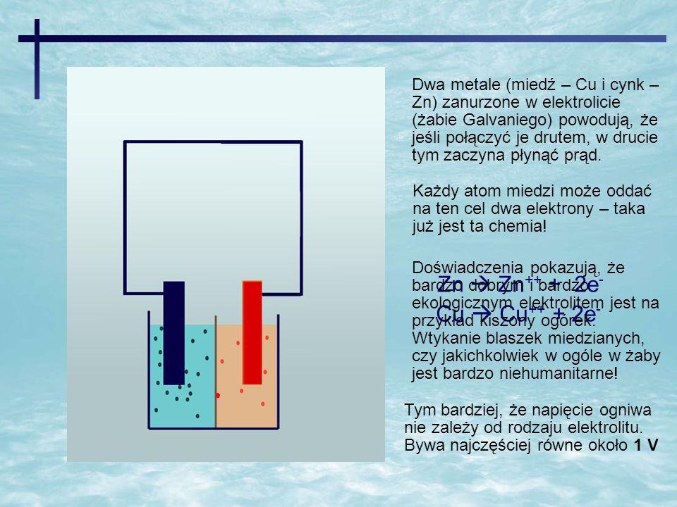Zn Zn ++ + 2e - Cu Cu ++ + 2e - Dwa metale (miedź – Cu i cynk – Zn) zanurzone w elektrolicie (żabie Galvaniego) powodują, że jeśli połączyć je drutem,