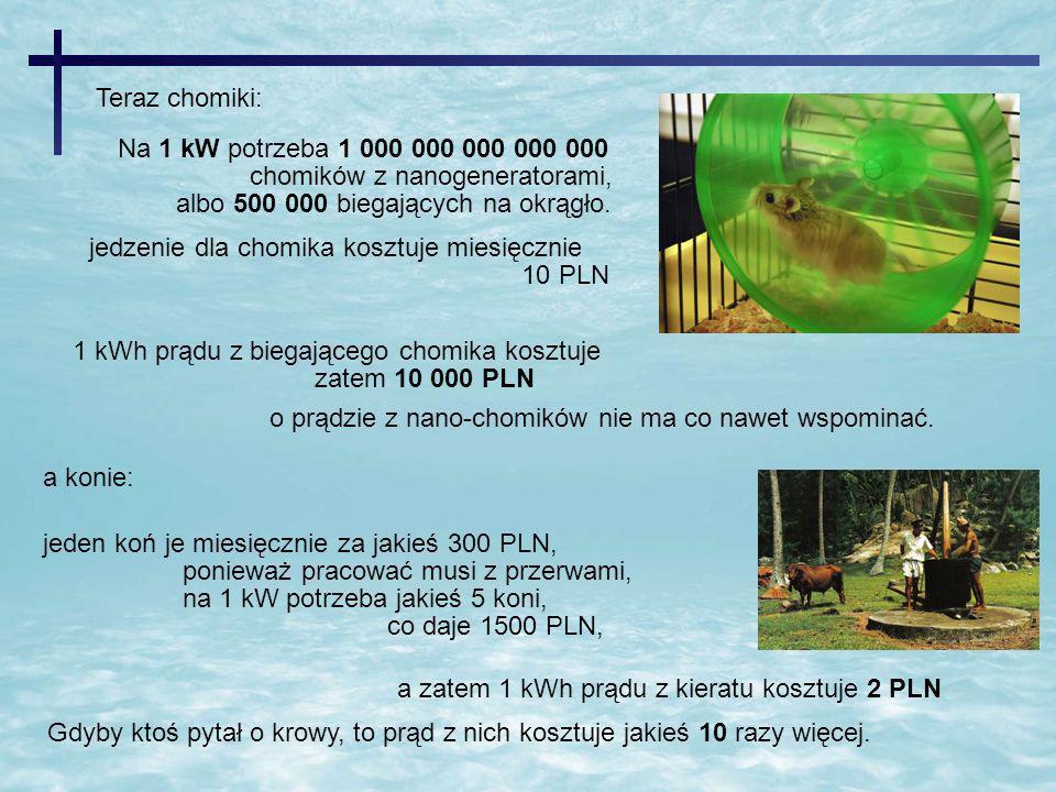 jedzenie dla chomika kosztuje miesięcznie 10 PLN Na 1 kW potrzeba 1 000 000 000 000 000 chomików z nanogeneratorami, albo 500 000 biegających na okrąg
