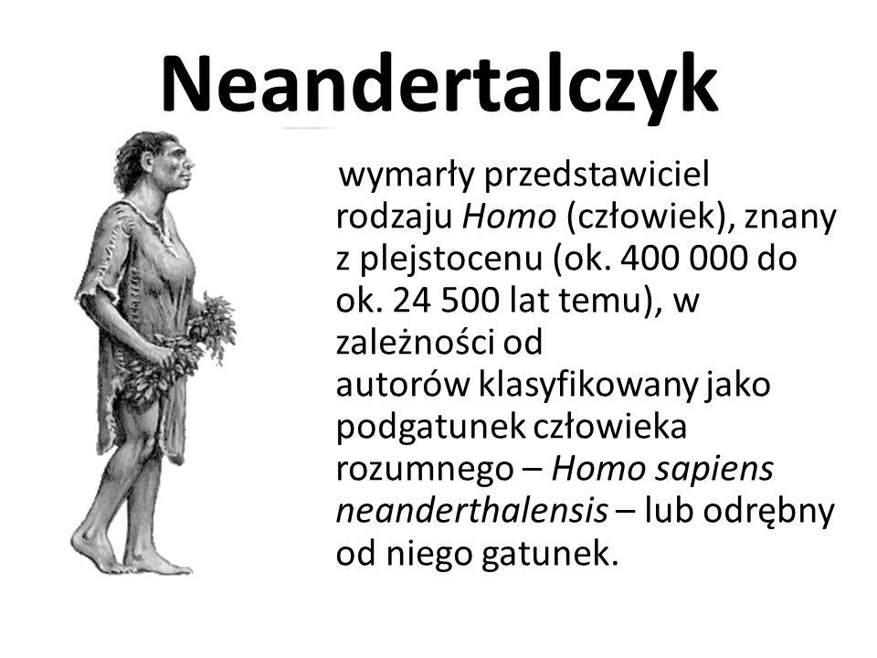 Emigracje Homo erectus