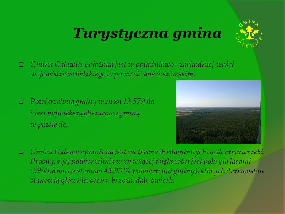 Turystyczna gmina Gmina Galewice położona jest w południowo - zachodniej części województwa łódzkiego w powiecie wieruszowskim, Powierzchnia gminy wyn
