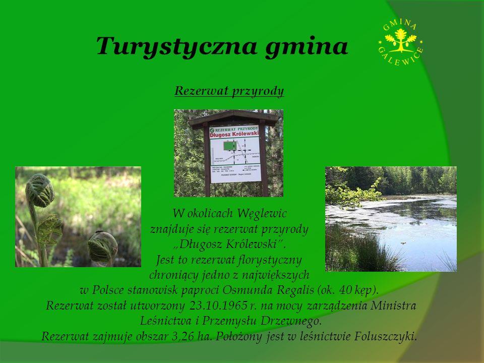 Turystyczna gmina Rezerwat przyrody W okolicach Węglewic znajduje się rezerwat przyrody Długosz Królewski. Jest to rezerwat florystyczny chroniący jed