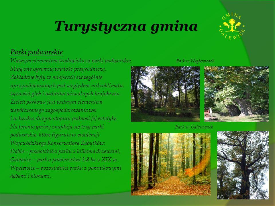 Turystyczna gmina Parki podworskie Ważnym elementem środowiska są parki podworskie. Park w Węglewicach Mają one ogromną wartość przyrodniczą. Zakładan