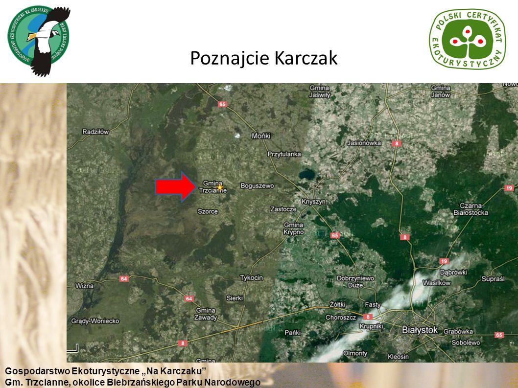 Poznajcie Karczak Gospodarstwo Ekoturystyczne Na Karczaku Gm. Trzcianne, okolice Biebrzańskiego Parku Narodowego