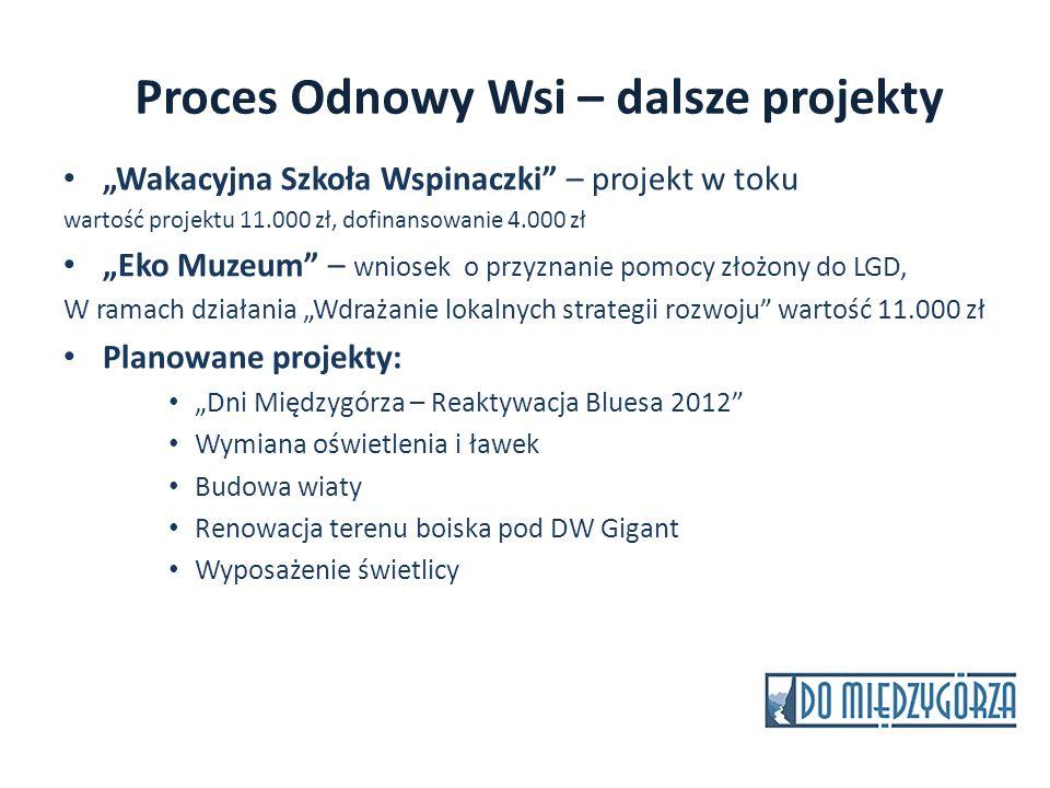 Proces Odnowy Wsi – dalsze projekty Wakacyjna Szkoła Wspinaczki – projekt w toku wartość projektu 11.000 zł, dofinansowanie 4.000 zł Eko Muzeum – wnio