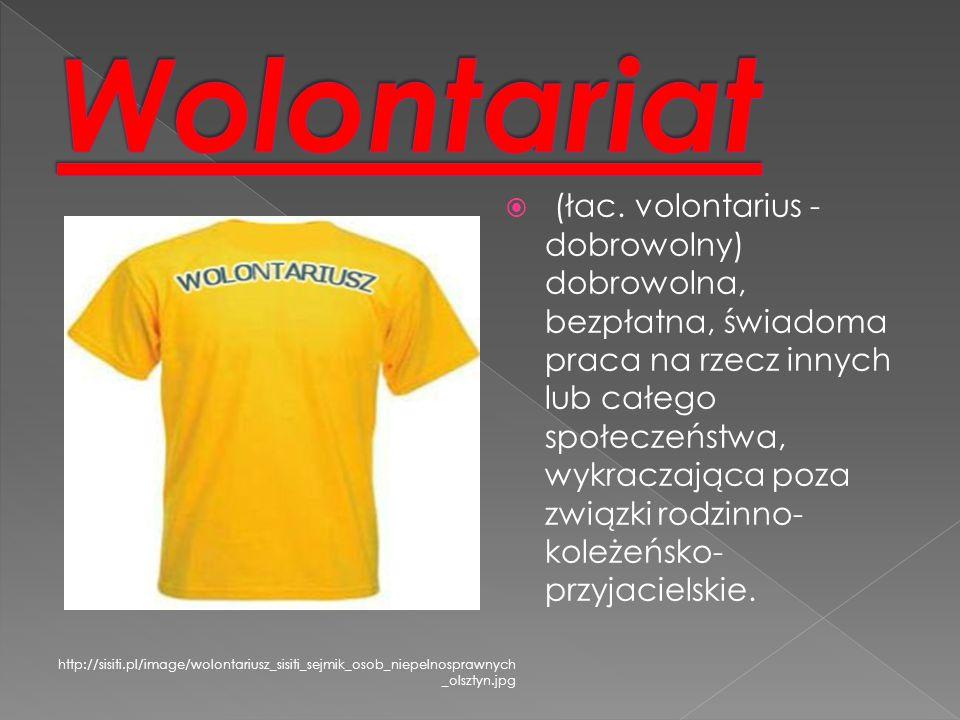 Wolontariat lokalny Wolontariat krajowy (indywidualny, poza miejscem zamieszkania) Workcampy Indywidualny Wolontariat Zagraniczny