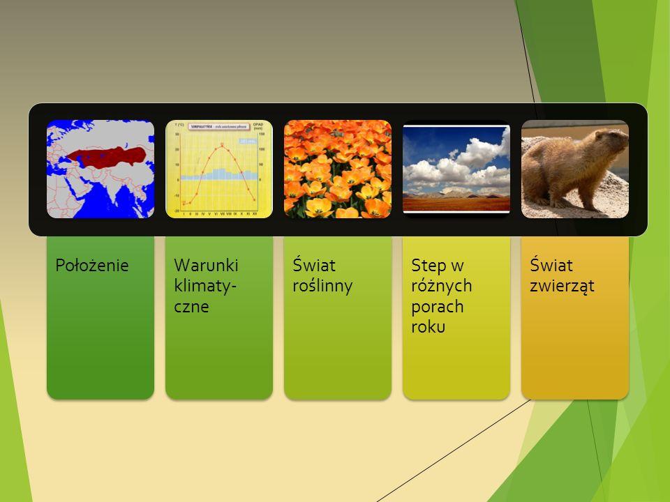 PołożenieWarunki klimaty- czne Świat roślinny Step w różnych porach roku Świat zwierząt