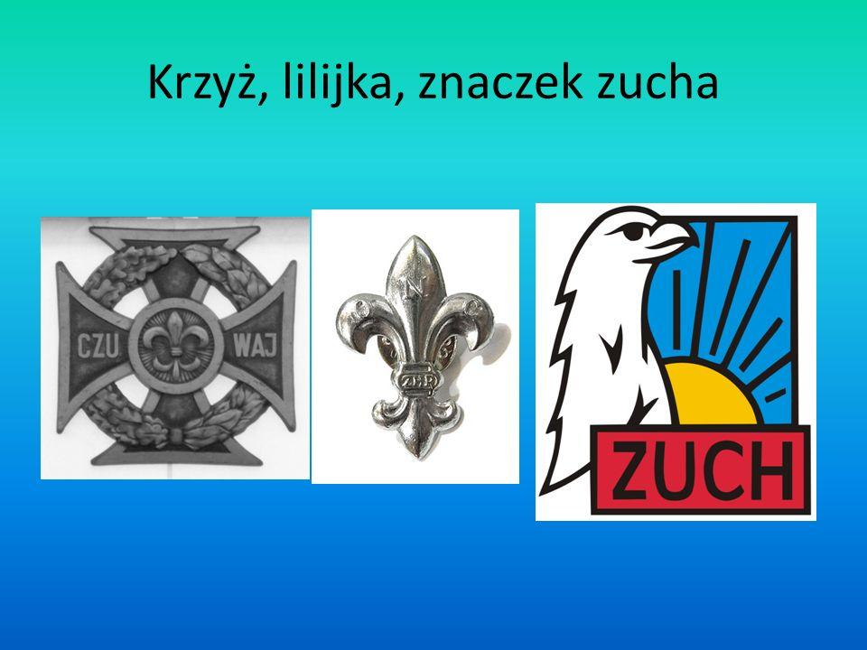Krzyż, lilijka, znaczek zucha