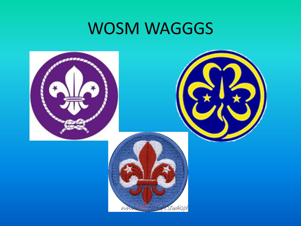 WOSM WAGGGS