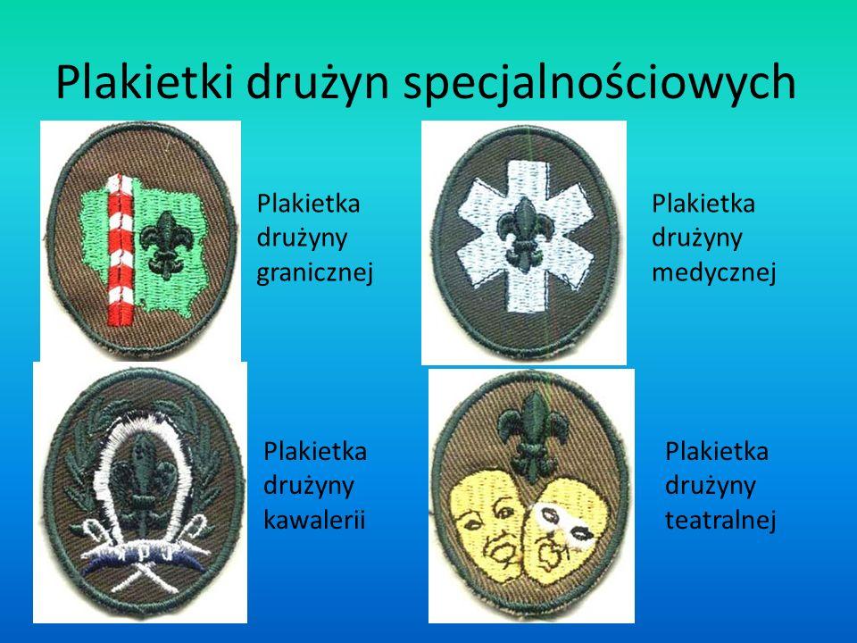 Plakietki drużyn specjalnościowych Plakietka drużyny granicznej Plakietka drużyny kawalerii Plakietka drużyny medycznej Plakietka drużyny teatralnej